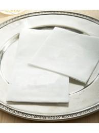 Paper Napkin Serviettes 100 Pull