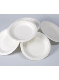 "Eco-Ware paper Plate (6 no = 5"") (100 Pcs)"