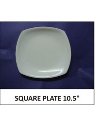 Acrylic Full Plate Square 10.5""
